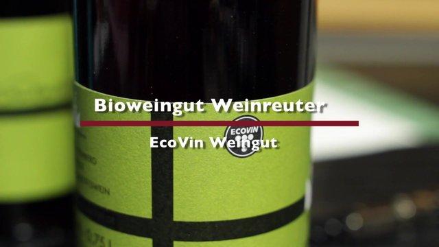 Organic winery Weinreuter – EcoVin winery