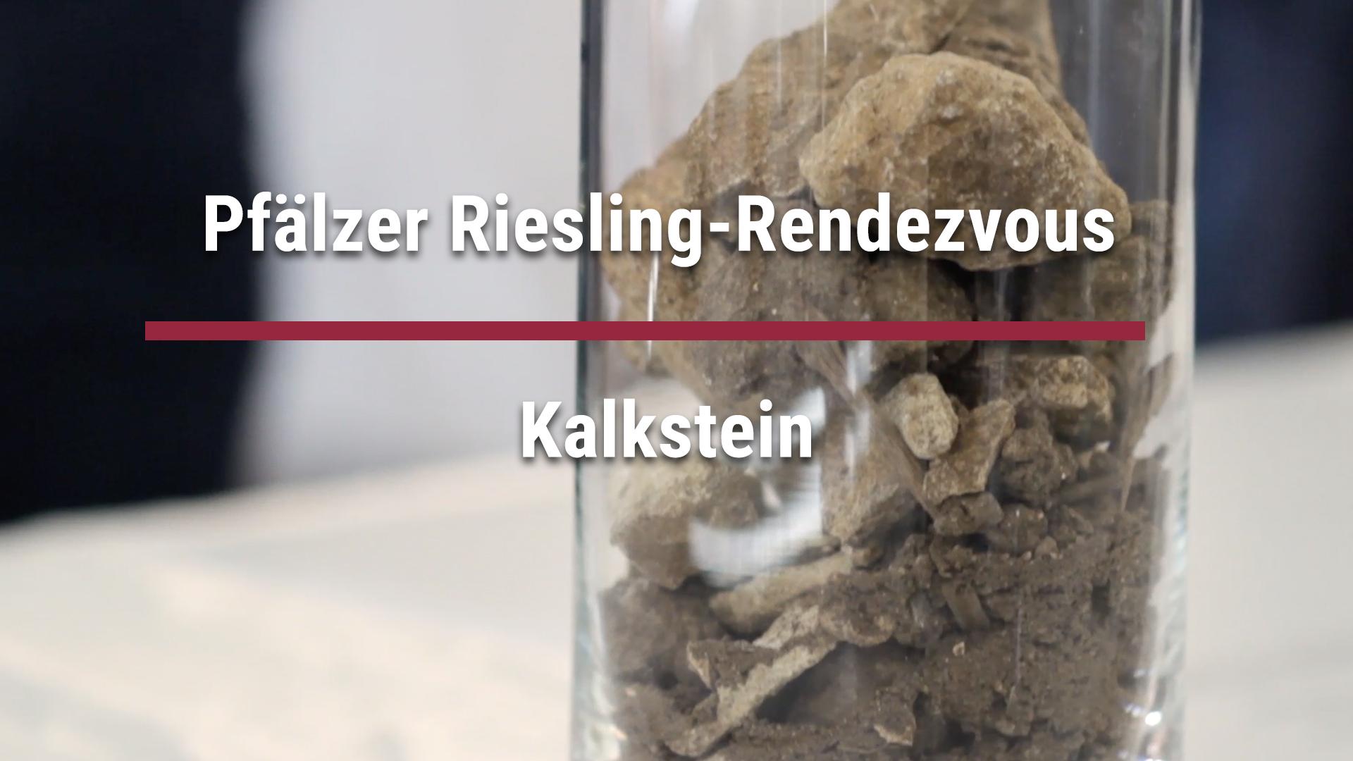 """Pfälzer Riesling-Rendezvous – Riesling-Parcour"" – Kalkstein"