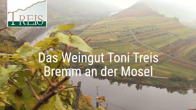 Das Weingut Toni Treis, Bremm