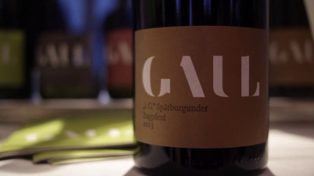 Short introduction – Weingut Karl-Heinz Gaul – Karoline Gaul