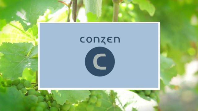 Weingut Günter Conzen