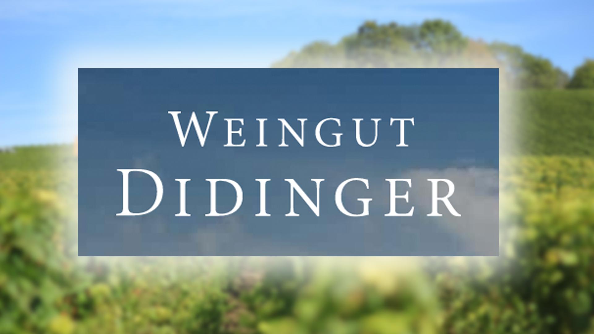 Jens Didinger – Didinger winery