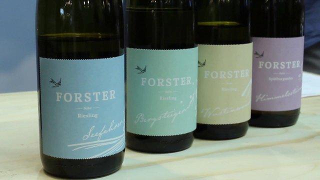 Weingut Forster EcoVin – Nahe