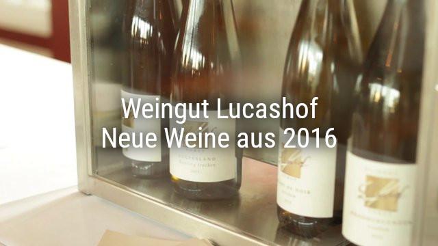 Weingut Lucashof – Neue Weine aus 2016