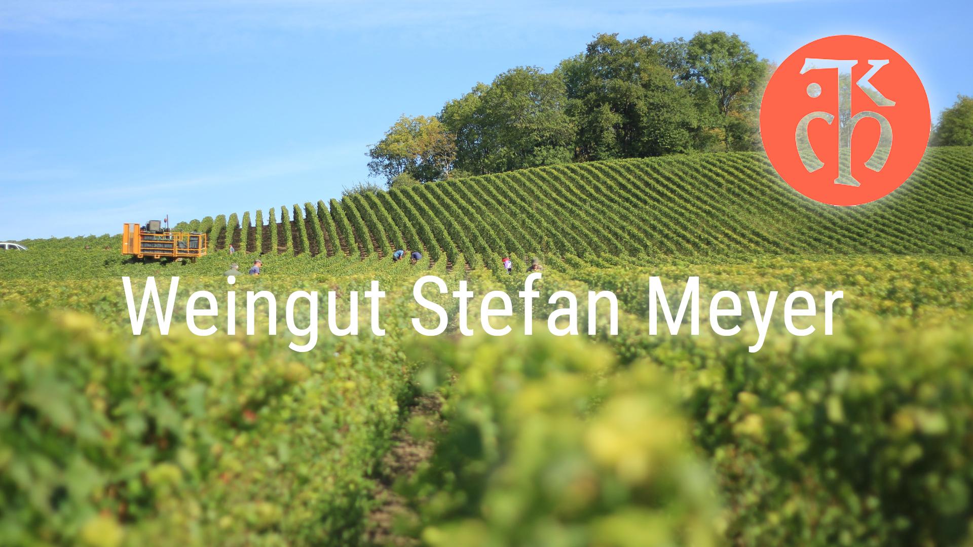 Short introduction – Stefan Meyer winery – Stefan Meyer