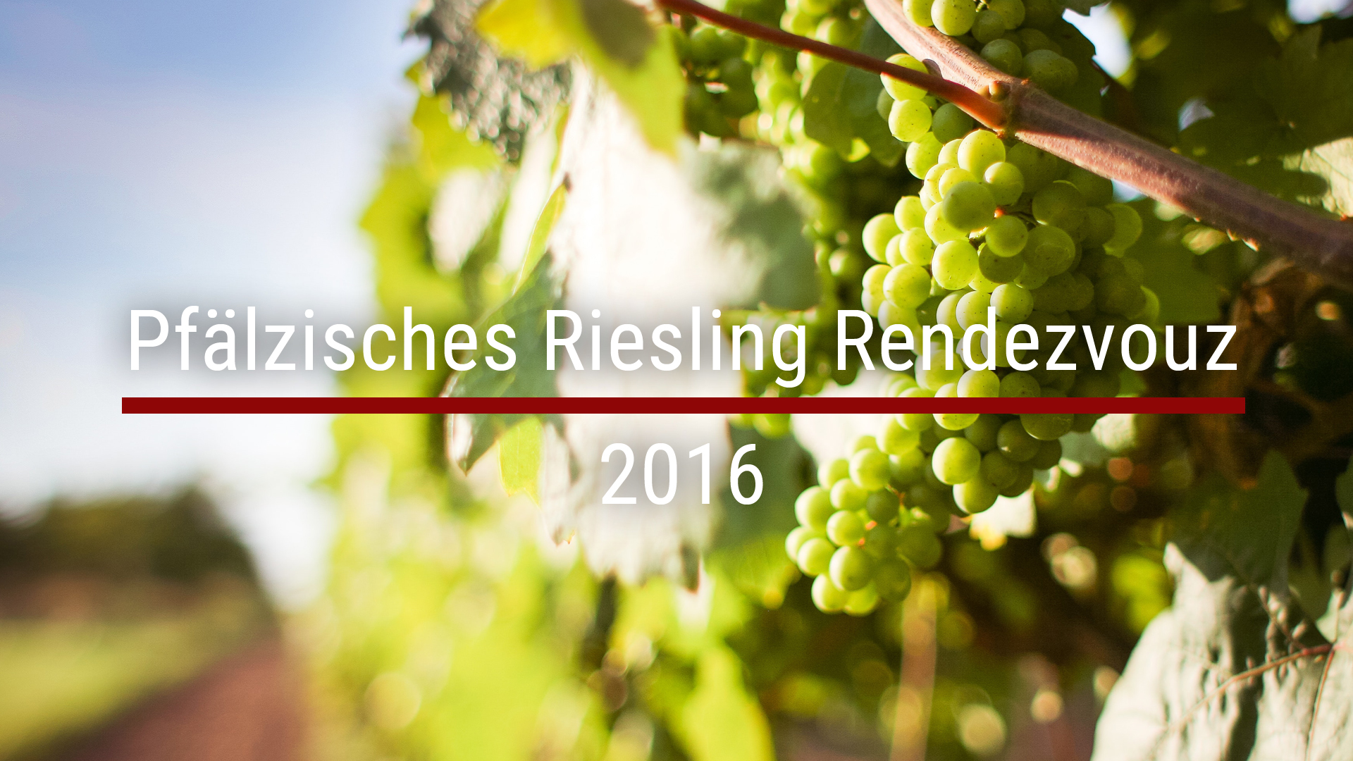 Pfälzisches Riesling Rendezvouz 2016
