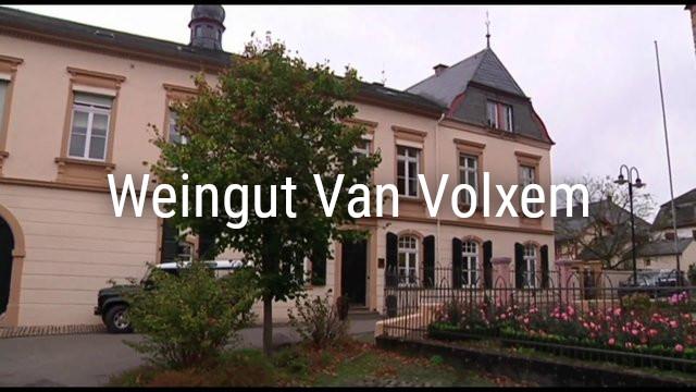 Weingut Van Volxem – Saarweine grosser Lagen!