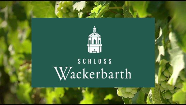 Wine-growing region of Saxony – wines from Wackerbarth Castle