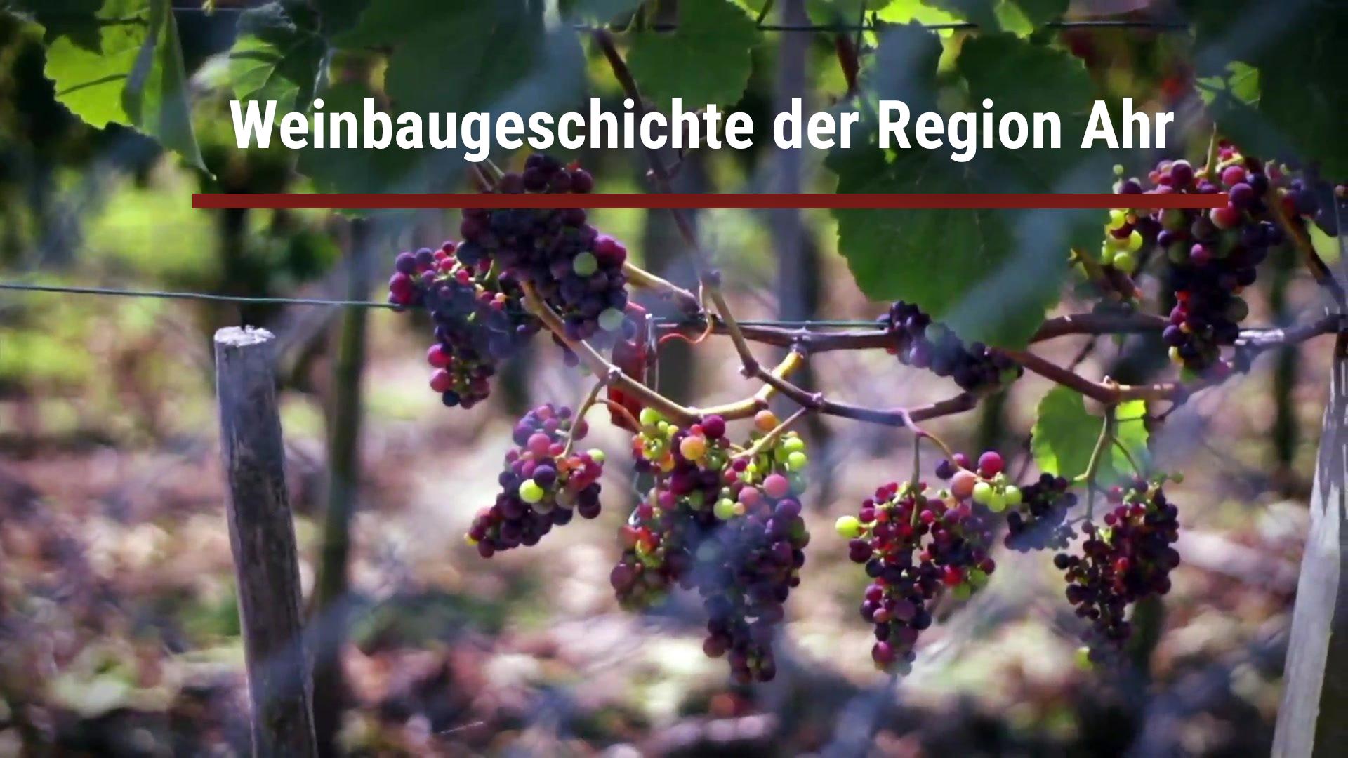 Wine-growing history of the Ahr region