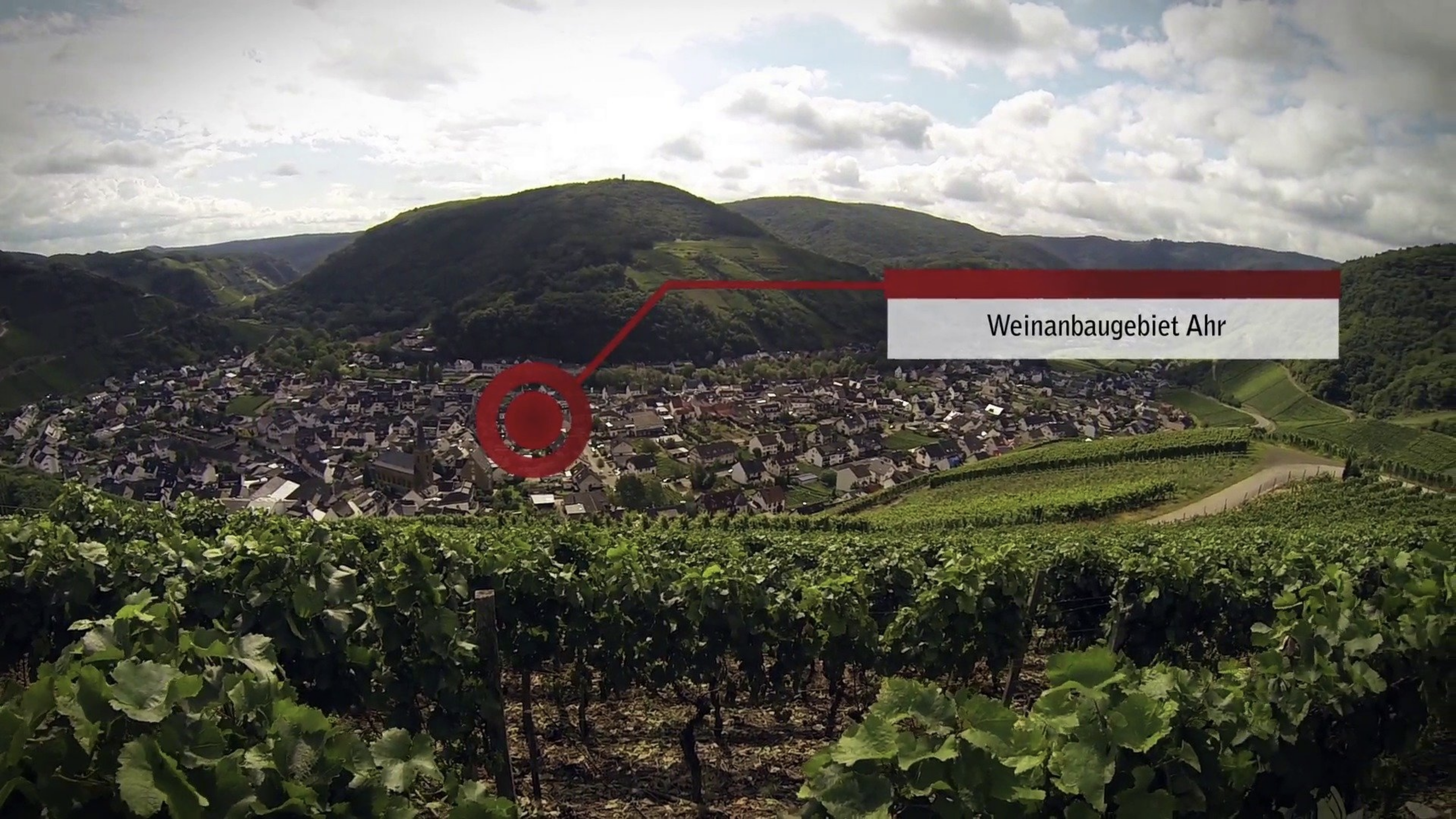 Ahr – One of the smallest wine-growing regions in Germany