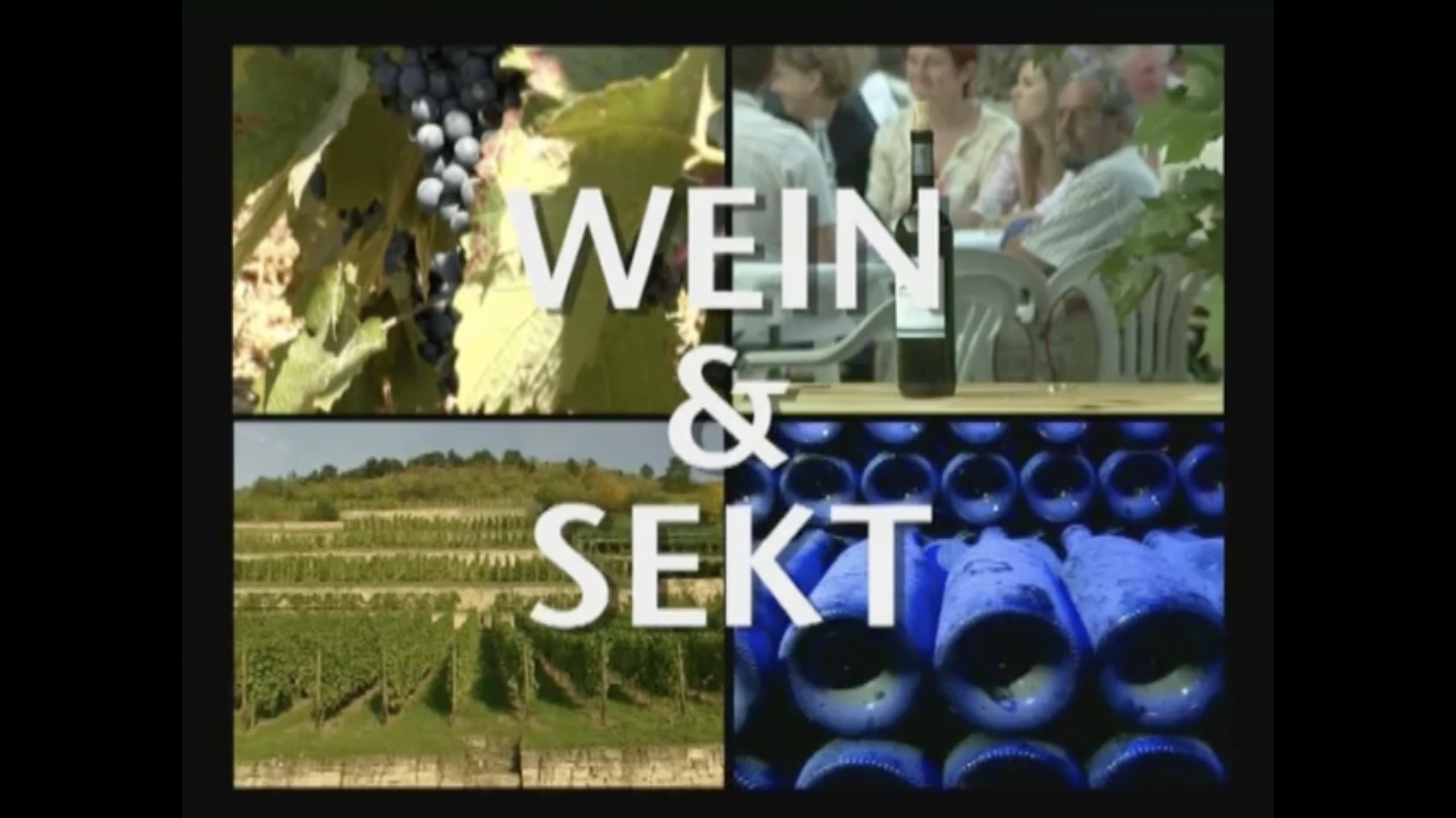Saale-Unstrut wine-growing region