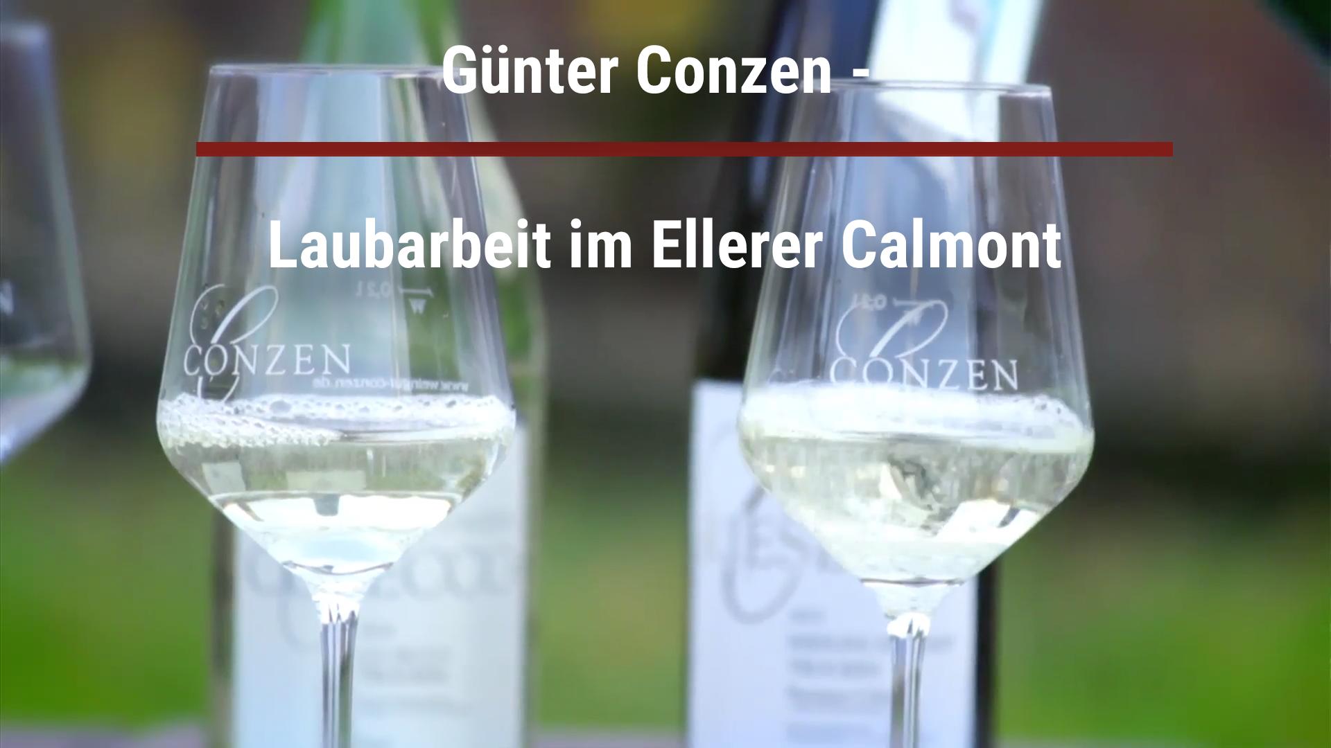 Günter Conzen – Foliage work in the Ellerer Calmont