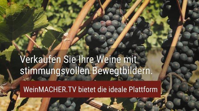 Weinmacher in Zeiten der Pandemie