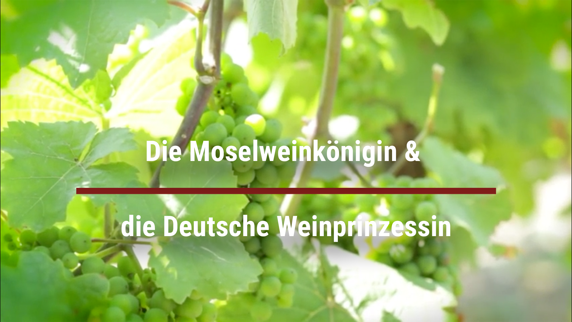 The Moselle Wine Queen & the German Wine Princess