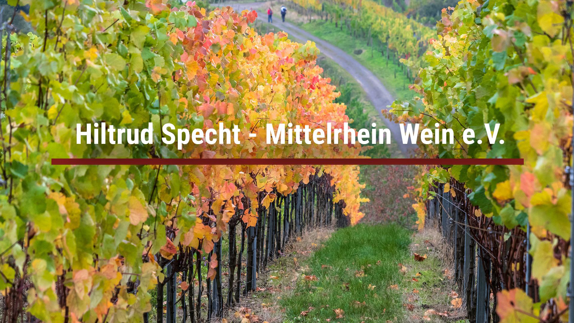 Hiltrud Specht – Mittelrhein Wein e.V.