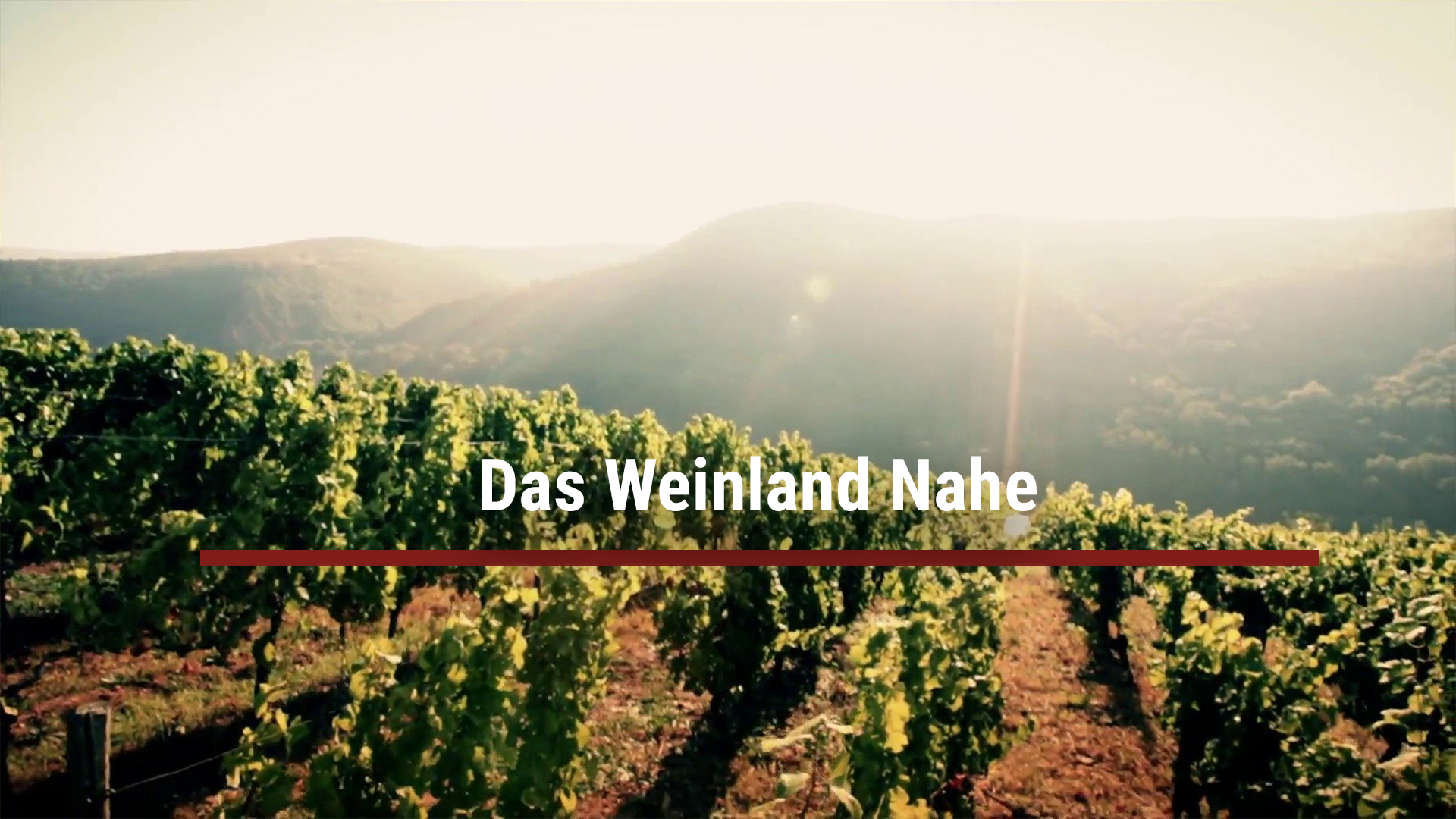 The Nahe wine country