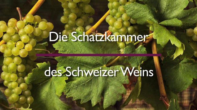 Die Schatzkammer des Mémoire des vins Suisse
