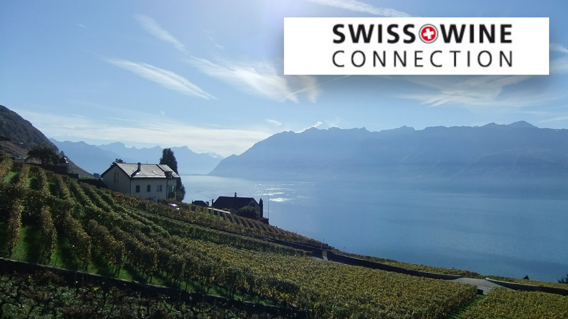 Swiss Wine Connection – Andreas Keller