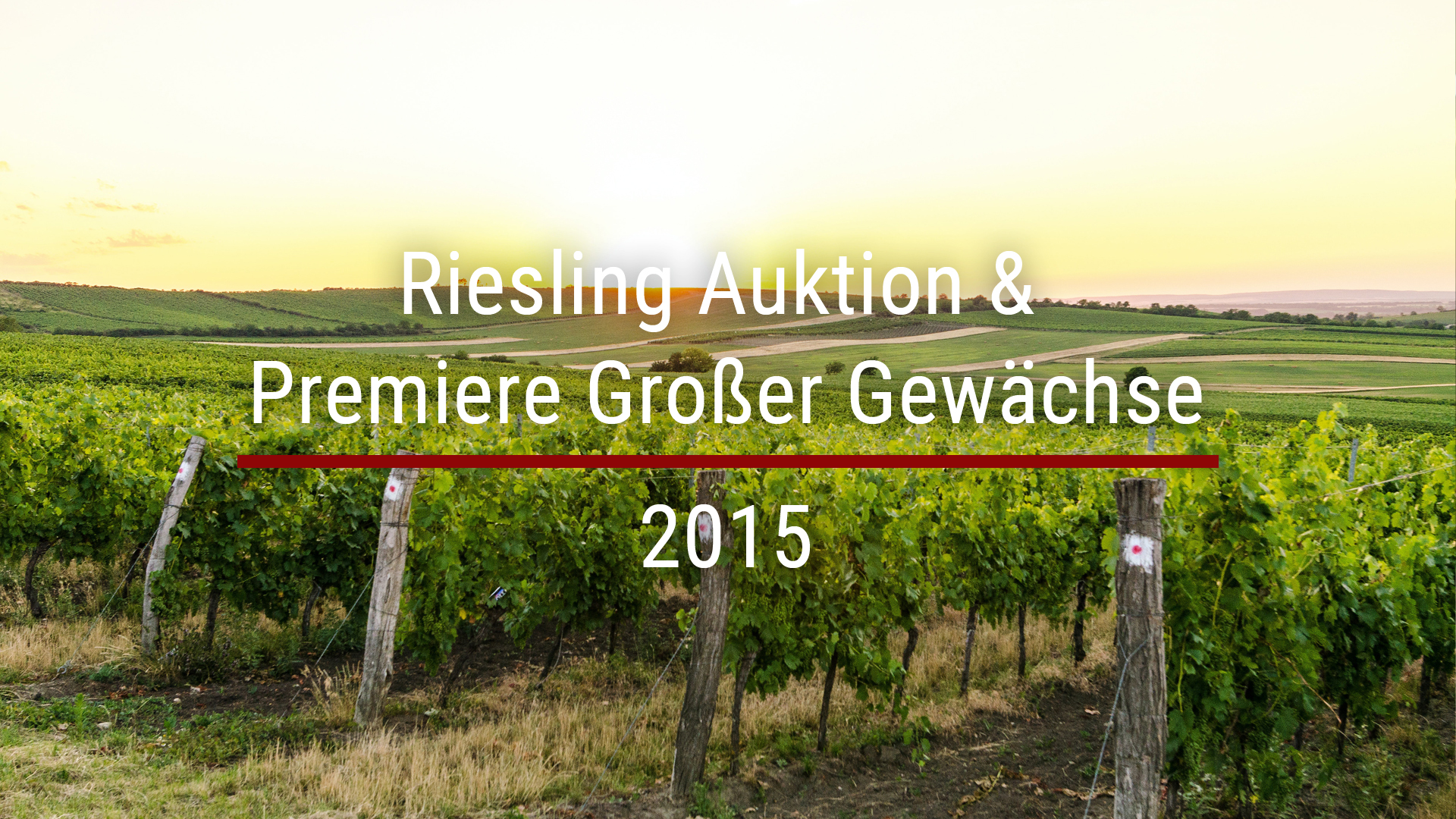 Riesling auction & premiere of Großer Gewächse 2015