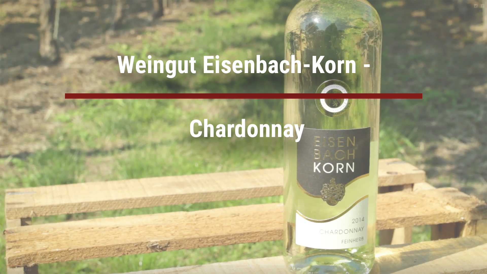 Winery Eisenbach-Korn – Chardonnay