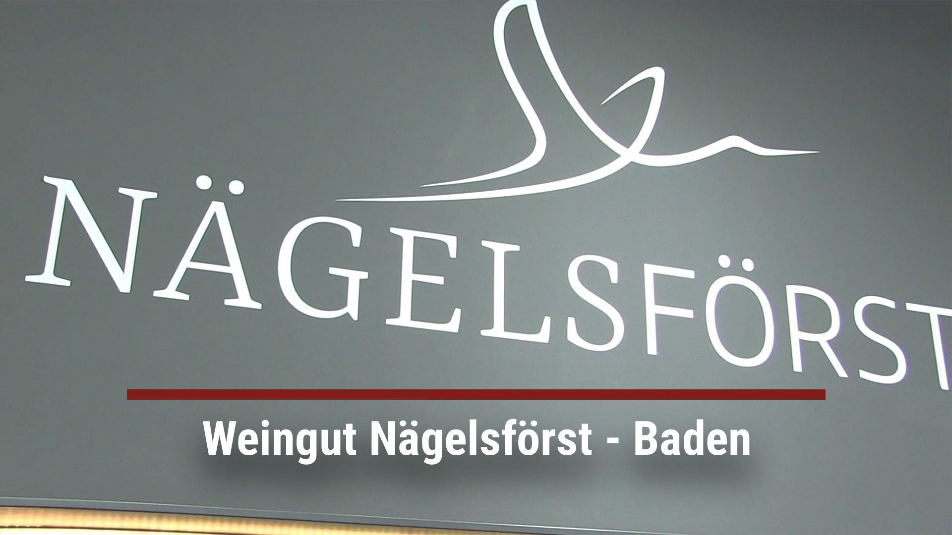 Winery Nägelsförst – Baden