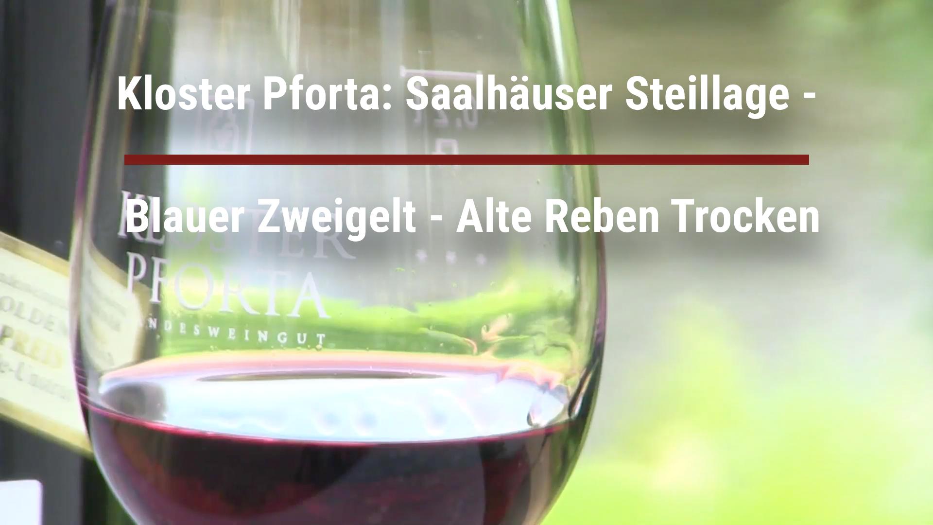 Kloster Pforta: Saalhäuser Steillage – Blauer Zweigelt – Alte Reben Trocken