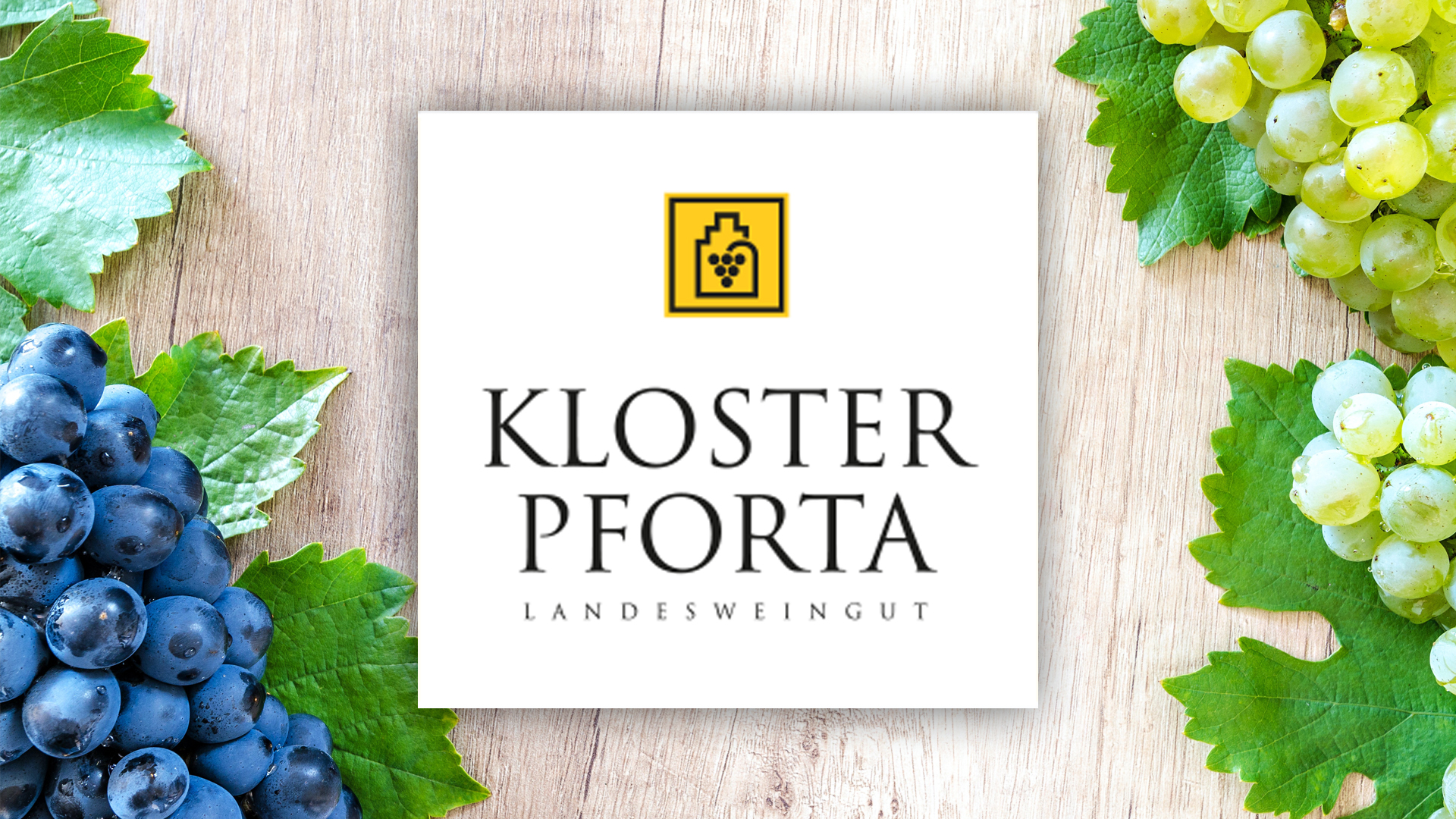 The state winery Kloster Pforta