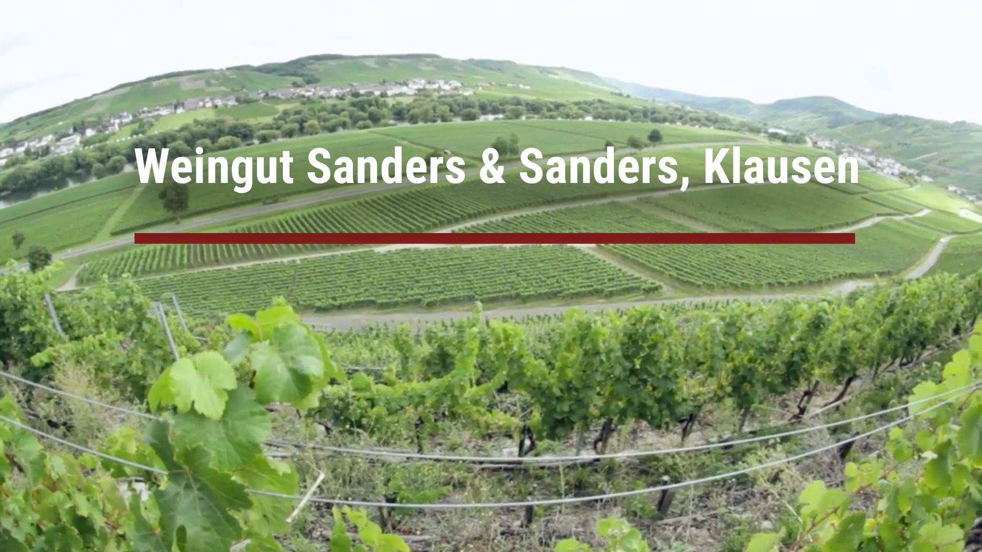 Winery Sanders & Sanders, Klausen