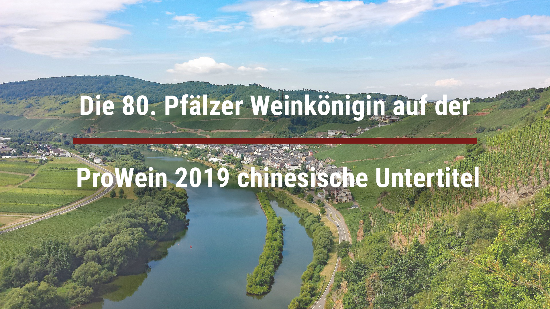 The 80th Palatinate Wine Queen at ProWein 2019 – Chinese subtitles