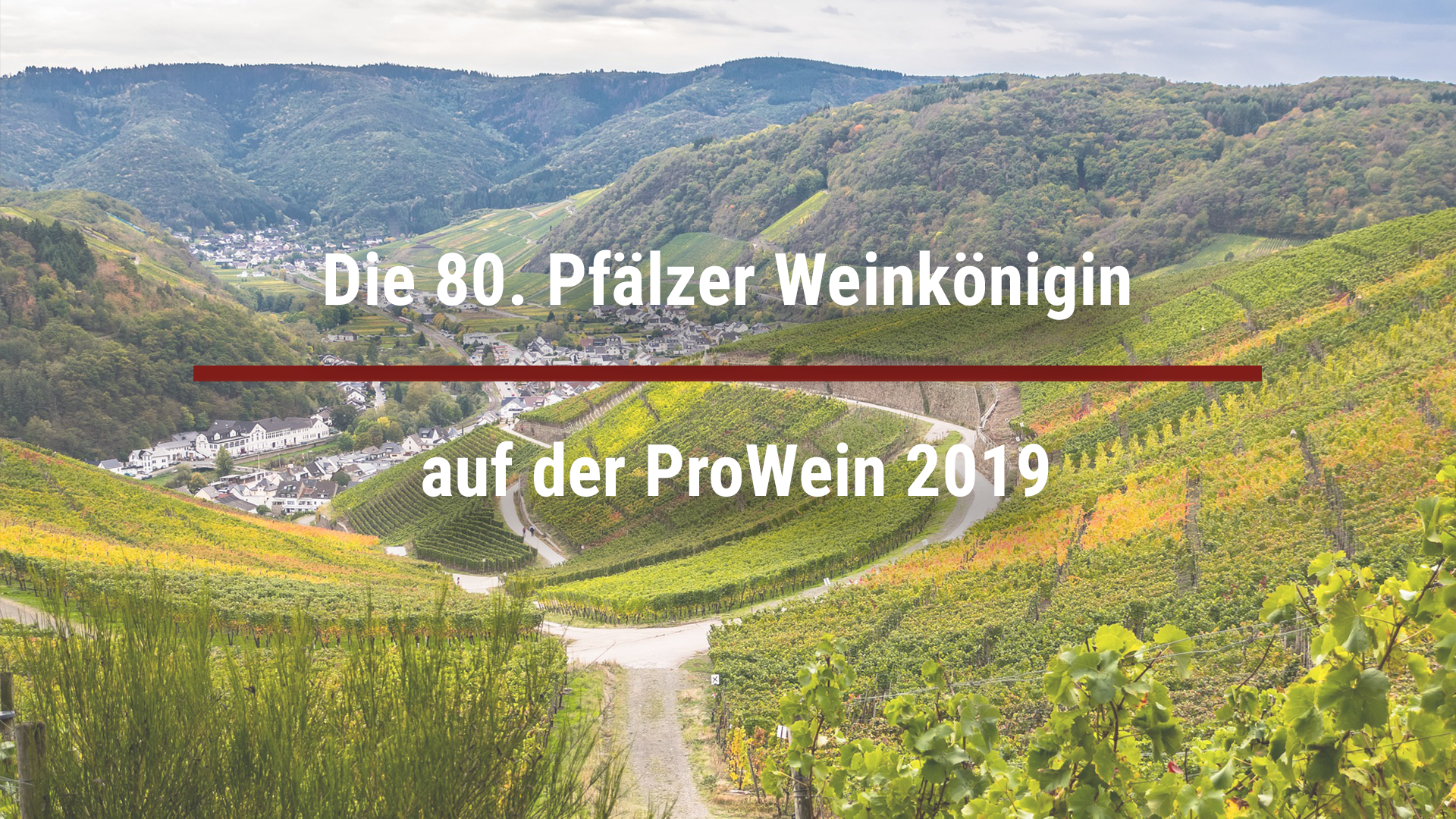 The 80th Palatinate Wine Queen at ProWein 2019