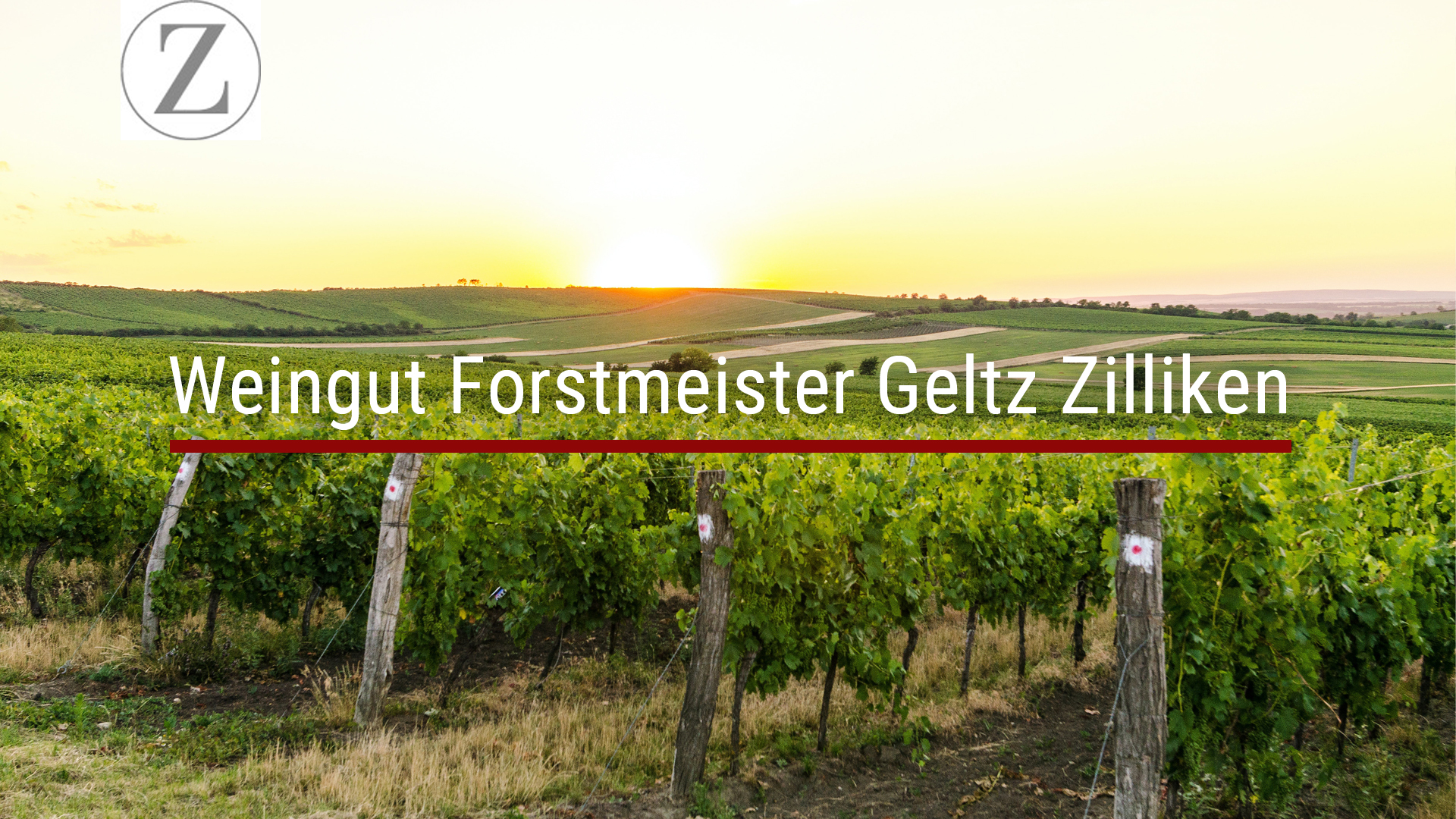 Dorothee Zilliken – Winery Forstmeister Geltz Zilliken